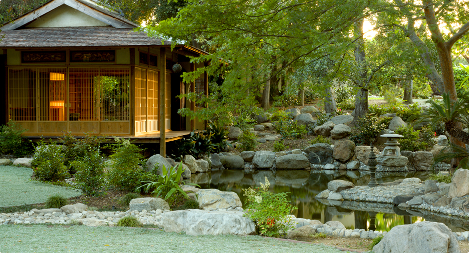 Creating A Japanese Garden: Ten Simple Elements Part 5