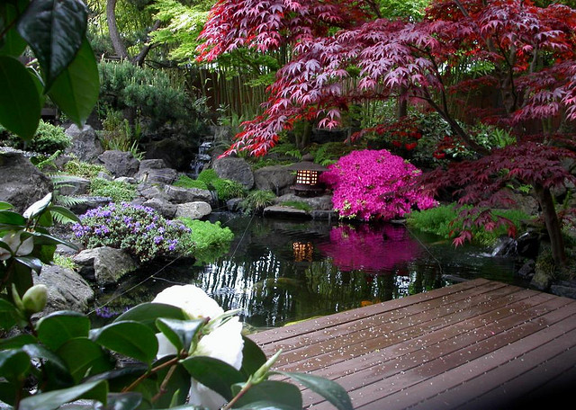 And, Because I Am In Love With The New And Modern Way Of Looking Gardens,  Today I Will Introduce You To The Amazingly Decorated Japanese Garden. Part 88